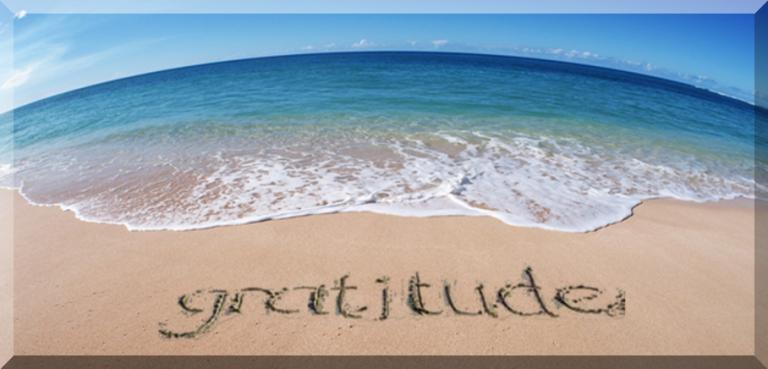 Gratitude for…